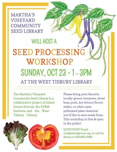Seed processing workshop with MV Community Seed Library