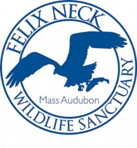 Kids' Program w/ Felix Neck - Tracking Animals in Winter