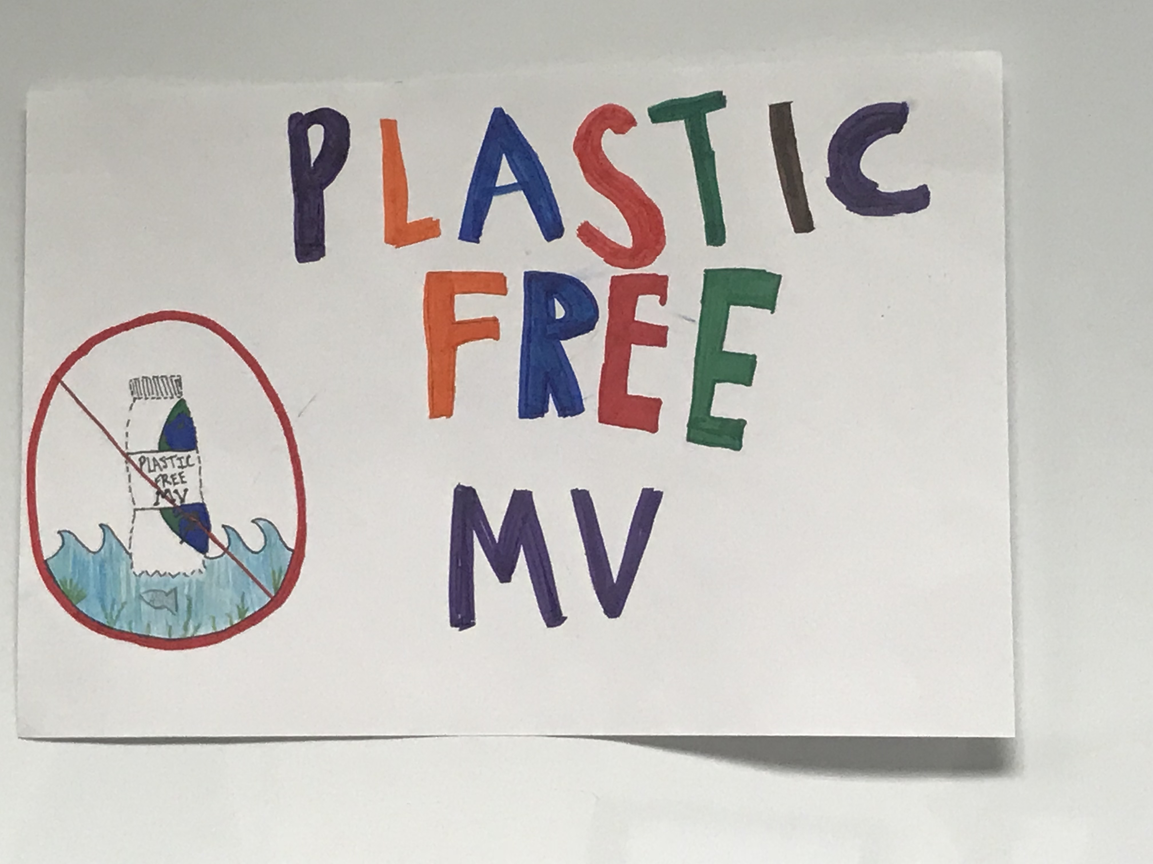 Plastic Bottle Discussion with Plastic Free MV | West