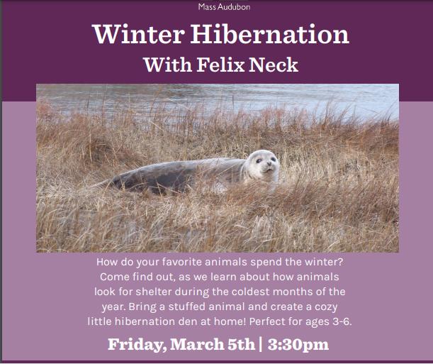Winter Hibernation with Felix Neck
